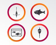 Fishing icons. Fish with fishermen hook symbol. Fishing icons. Fish with fishermen hook sign. Float bobber symbol. Aquarium icon. Infographic design buttons Royalty Free Stock Images