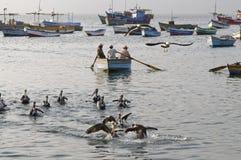 Fishing  In Ancon Stock Photo