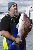 Fishing industry Royalty Free Stock Photos