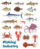 Vector fresh fish catch icons for fishery industry. Fishing industry seafood and fresh fish catch icons. Vector set of sea food squid, turtle or tuna and shrimp Royalty Free Stock Photography
