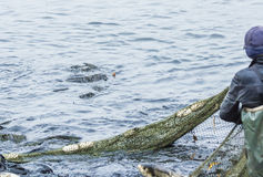 Fishing on the lake. Man pulls a fish net Stock Photography