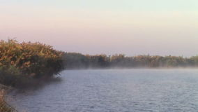 Fishing lake in morning mist stock video