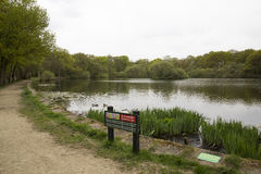 Fishing lake with safety notices Royalty Free Stock Image