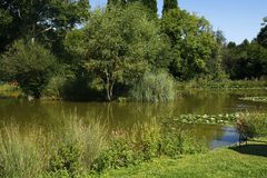Fishing Lake. At Twelve Oaks Holiday Park Royalty Free Stock Photography