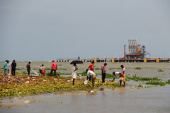 Fishing in landfills in Cochin(Kochin) of India Royalty Free Stock Image