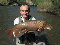 Fishing - lenok trout Royalty Free Stock Images