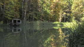 Fishing lodge on a lakeside in the woods stock video footage