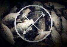 Fishing, logo, vintage effect Royalty Free Stock Photo