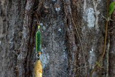 Fishing Lure Hanging In Tree Stock Photo