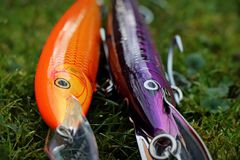 Fishing lure plug Rapala Countdown and Floater Magnum 18 cm. Rapala Countdown and Floating Magnums are used primarily for sea fishing. These lures have accounted royalty free stock images