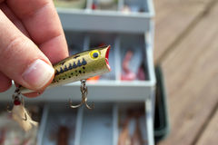 Fishing Lure Selection Royalty Free Stock Photography