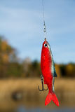 Fishing lure. Fishing soft lure for pike Stock Images