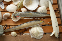Fishing Lures. Closeup of Fishing lures and sea shells Royalty Free Stock Images