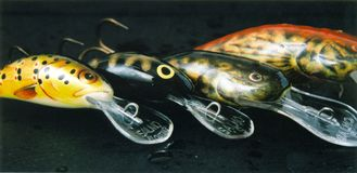 Fishing lures - wobblers. Salmo, top lures for fishing Royalty Free Stock Images
