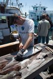 Man preparing a fresh fish Stock Images