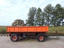 Net in trailer near Curonian spit, Lithuania