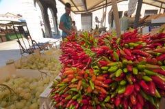 At the Fishing Market. Venice stock photo