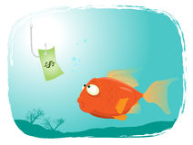 Fishing With Money. Illustration of a cartoon red fish looking at a dollar paper Royalty Free Stock Photo