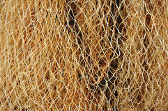 Fishing net. For background & image Stock Photos