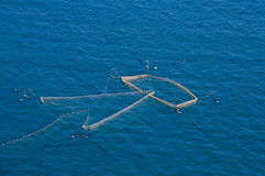 Fishing net. Fishing. Nets into the sea, catch fish Royalty Free Stock Photography