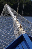 Fishing net. Or mesh above water stock image