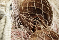 Fishing net. Close up,italy royalty free stock images