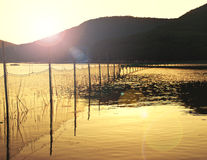 Fishing net in bay near fisherman village during sunset Royalty Free Stock Images