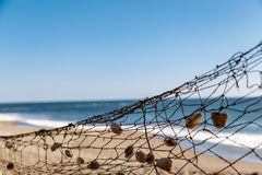 Fishing net in beach. With shells stock photos