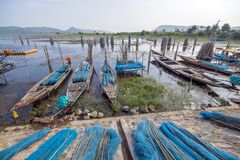 Fishing net boats and landscape trio at chilika lake rambha india