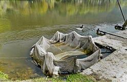 Fishing net at breeding-pond royalty free stock image