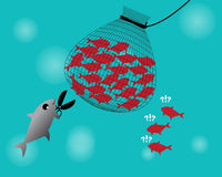 Fishing net catch the fish. Fishing net chasing fish group,The fish use scissor cutting net for help,vector,illustration Royalty Free Stock Image