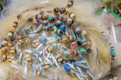 Fishing net with fish Stock Photo