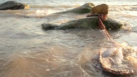 Fishing net with fish in the sea. stock footage
