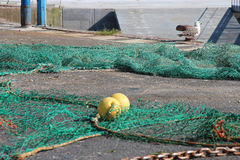 A fishing net is laid on the ground of a port (France) Royalty Free Stock Image