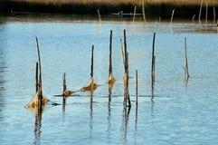 Net,trap,entrapment,Fishing net,lake,job Stock Image