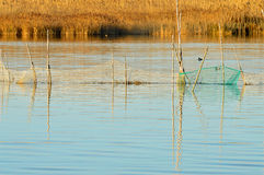 Net,trap,entrapment,Fishing net,lake,job Stock Photography