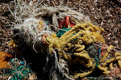 Fishing net pollution from the sea. Photo of plastic pollution on the beach brought by the sea, different types of fishing net stock images