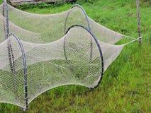 Fishing web on green grass Royalty Free Stock Photo