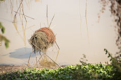 Fishing net. In the river near cambodian village Royalty Free Stock Photos