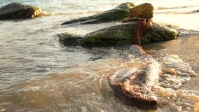 Fishing net on seashore. stock footage