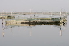 The fishing net in the wetland Royalty Free Stock Photos