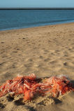 Fishing nets on the beach Stock Photo