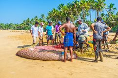 Fishing with nets in Bentota Royalty Free Stock Photo