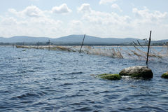 Fishing nets - 14. Fishing nets off the coast of the Black Sea in Bulgaria in the summer Stock Photography