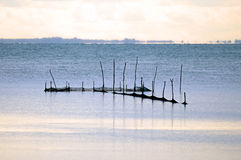 Fishing nets. Shot in the middle of lagoon in Italy, Valle Cavanata nature reserve Royalty Free Stock Photos