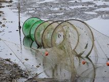 Fishing nets. Weathered with green algae standing in low water Royalty Free Stock Image