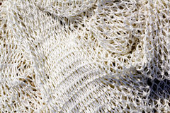 Fishing new white net texture closeup Stock Images