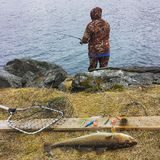 Fishing in Norway Royalty Free Stock Photography