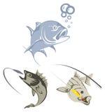 Fishing. Ocean and river fish vectors Stock Images