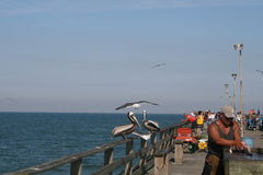 Fishing off the pier. This photo was taken on Johnny Mercer Pier in Wilmington, North Carolina Royalty Free Stock Photography